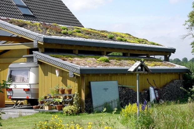 Dachbegrünung Carport, Neunkirchen (2000) – Bedachungen Arnolds GmbH ...
